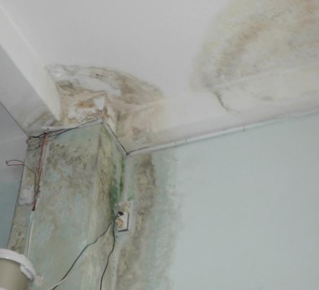 Phương pháp chống thấm tường nhà cũ tại Thanh Xuân triệt để.1