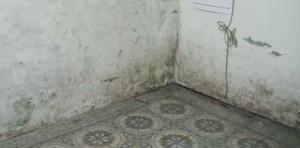 chống thấm nhà