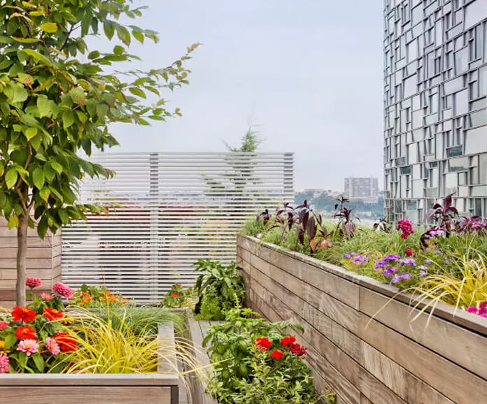 Vườn hoa bốn mùa trên sân thượng