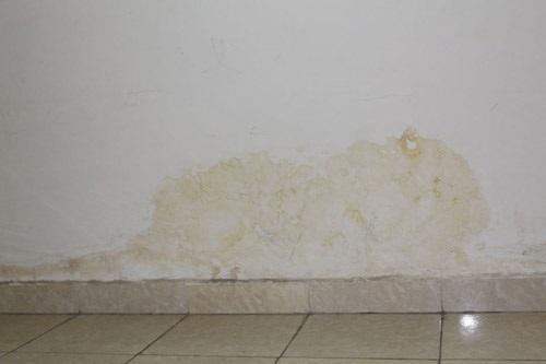 chân tường bị ẩm mốc